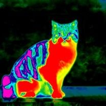 Wat is infraroodverwarming
